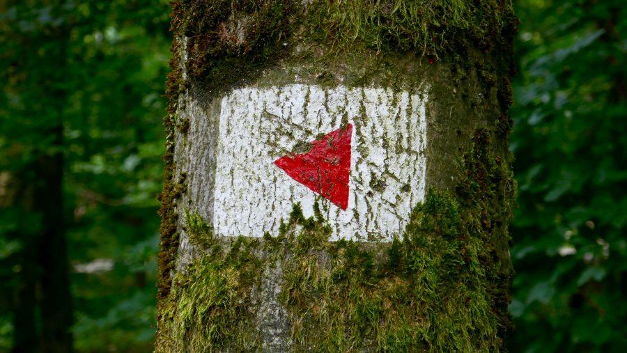 Immer dem roten Dreieck folgen